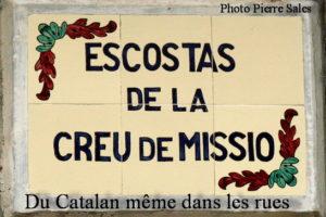 IMG_3867 plaque rue SITE