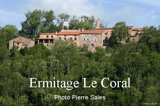 _mg_8288-nd-coral-copie-2-site