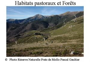 habitats pastoraux et forêts SITE