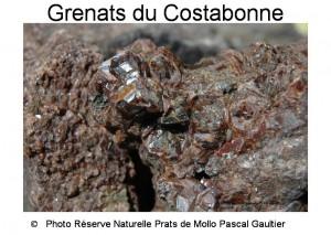 Grenats du Costabonne SITE